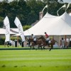 A Polo Themed Event